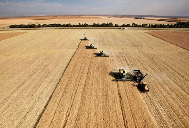 NAICS Code 111 - Crop Production