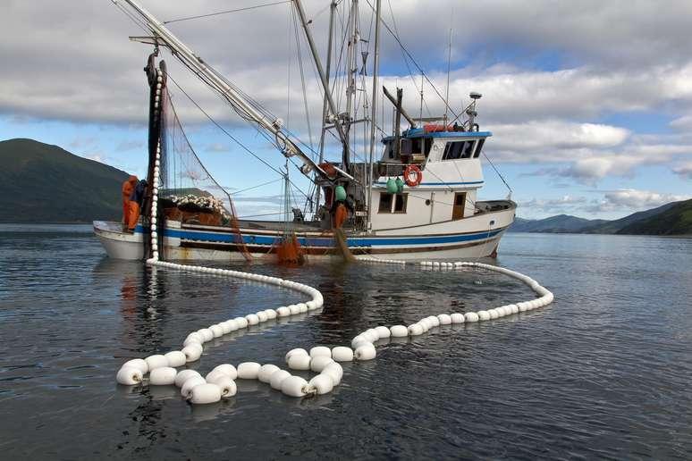 NAICS Code 11411 - Fishing