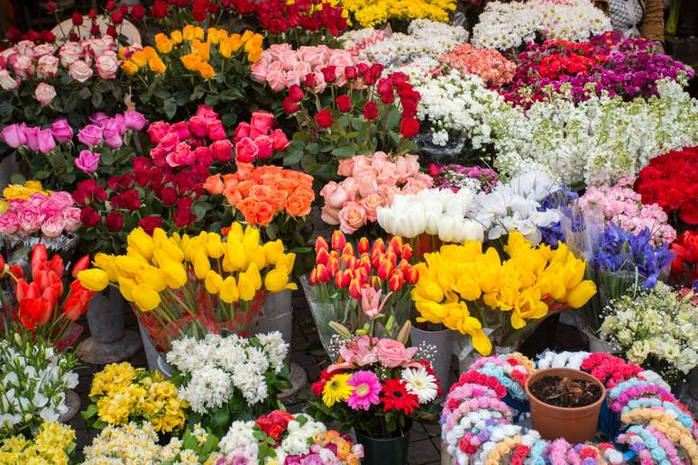 NAICS Code 424930 - Flower, Nursery Stock, and Florists' Supplies Merchant Wholesalers
