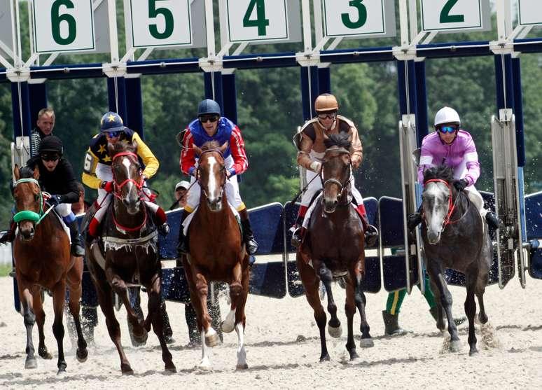 NAICS Code 711212 - Racetracks
