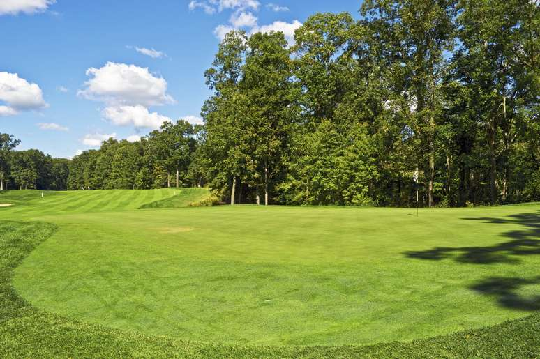 NAICS Code 713910 - Golf Courses and Country Clubs