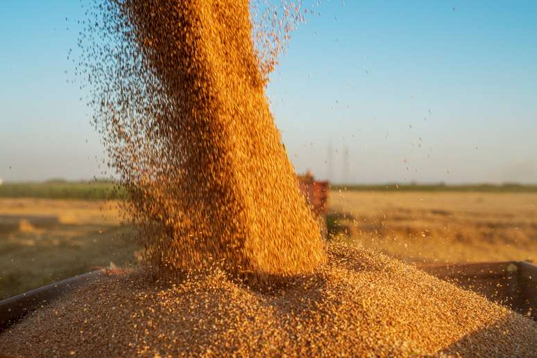 SIC Code 011 - Cash Grains