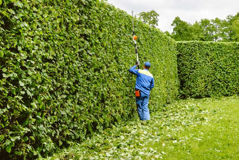 SIC Code 078 - Landscape and Horticultural Services