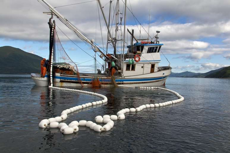 SIC Code 091 - Commercial Fishing