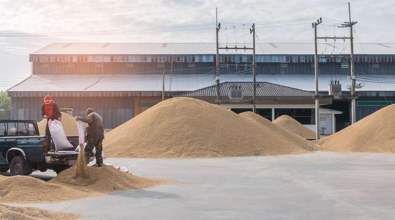 SIC Code 2044 - Rice Milling