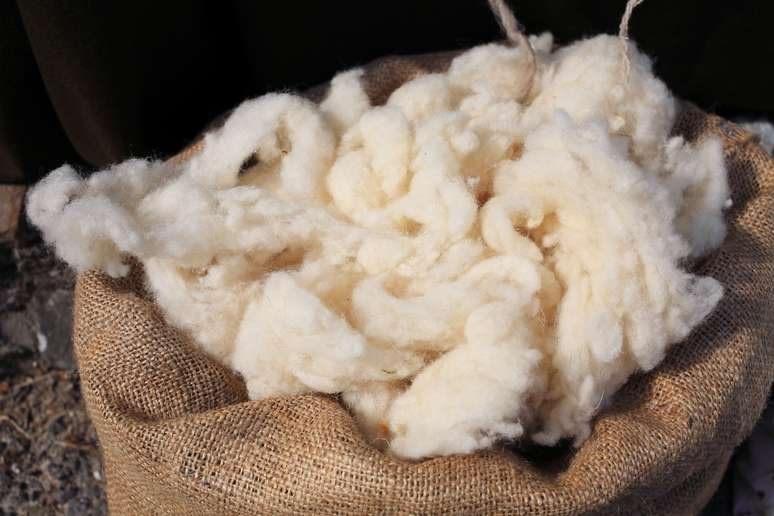 SIC Code 2231 - Broadwoven Fabric Mills, Wool (including Dyeing and Finishing)