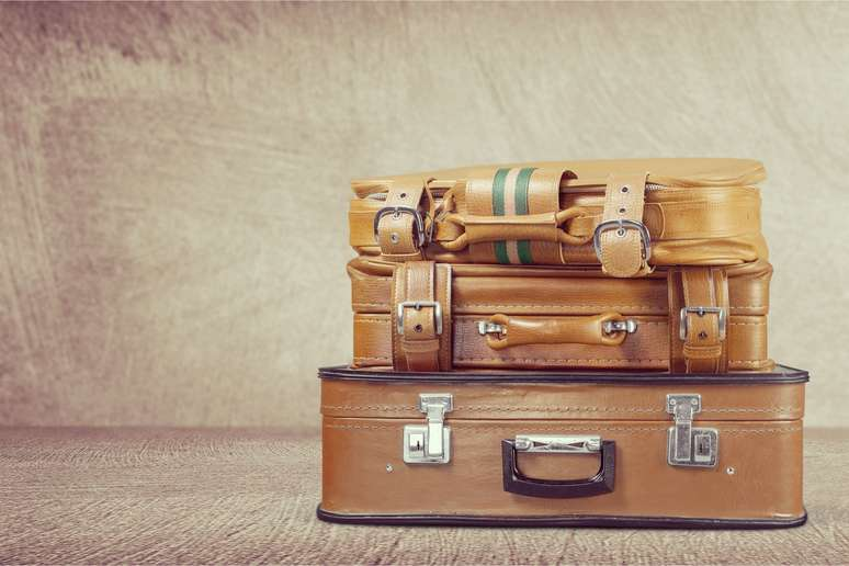 SIC Code 3161 - Luggage
