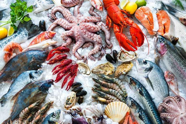 SIC Code 5146 - Fish and Seafoods