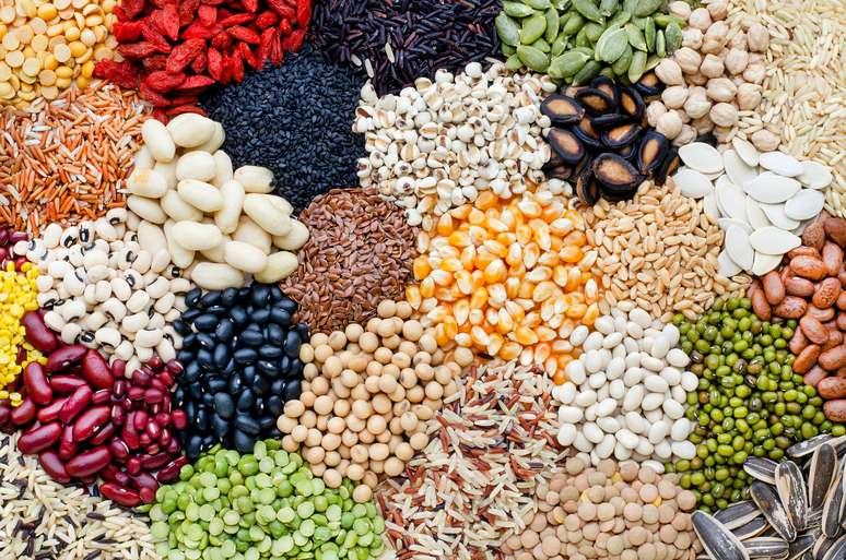 SIC Code 515 - Farm-Product Raw Materials