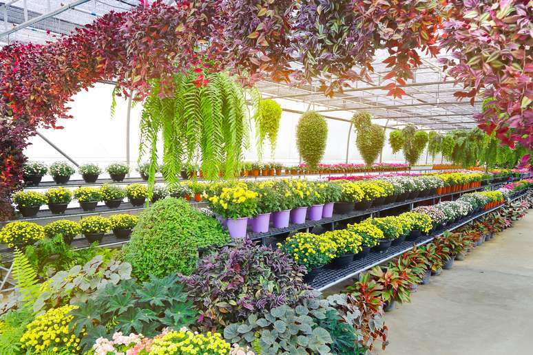 SIC Code 5261 - Retail Nurseries, Lawn and Garden Supply Stores