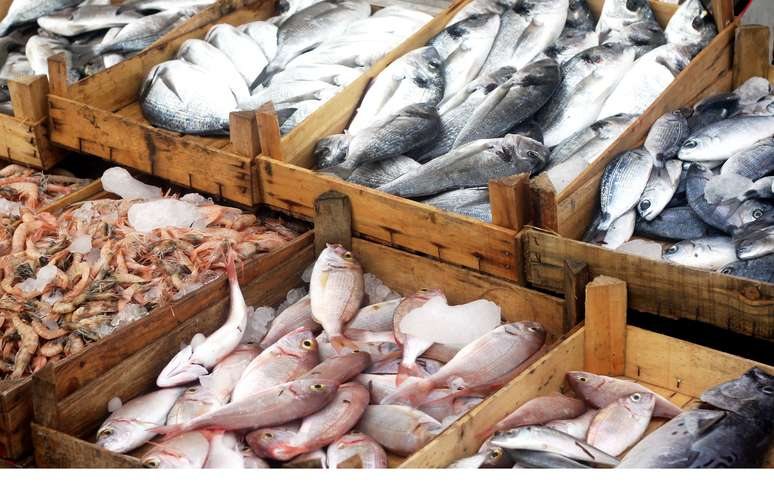 SIC Code 542 - Meat and Fish (Seafood) Markets, including Freezer Provisioners